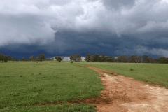 Wiating-for-rain