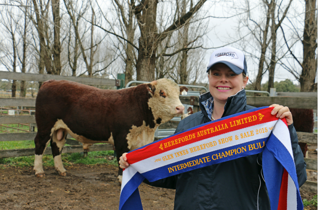 Junior & Grand Champion Bull - Glen Innes Show & Sale 2015
